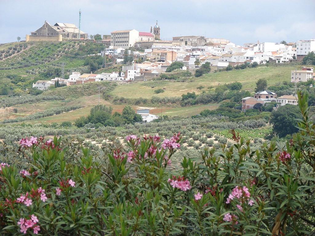 Imagen de la noticia Proceso de participación subvencionado en el Ayuntamiento de Montilla