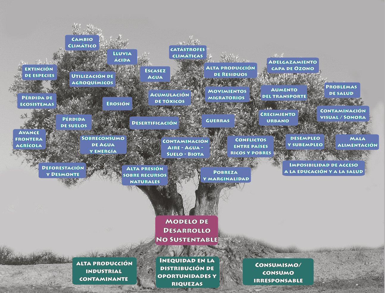 Imagen de la meotodología Árbol de problemas