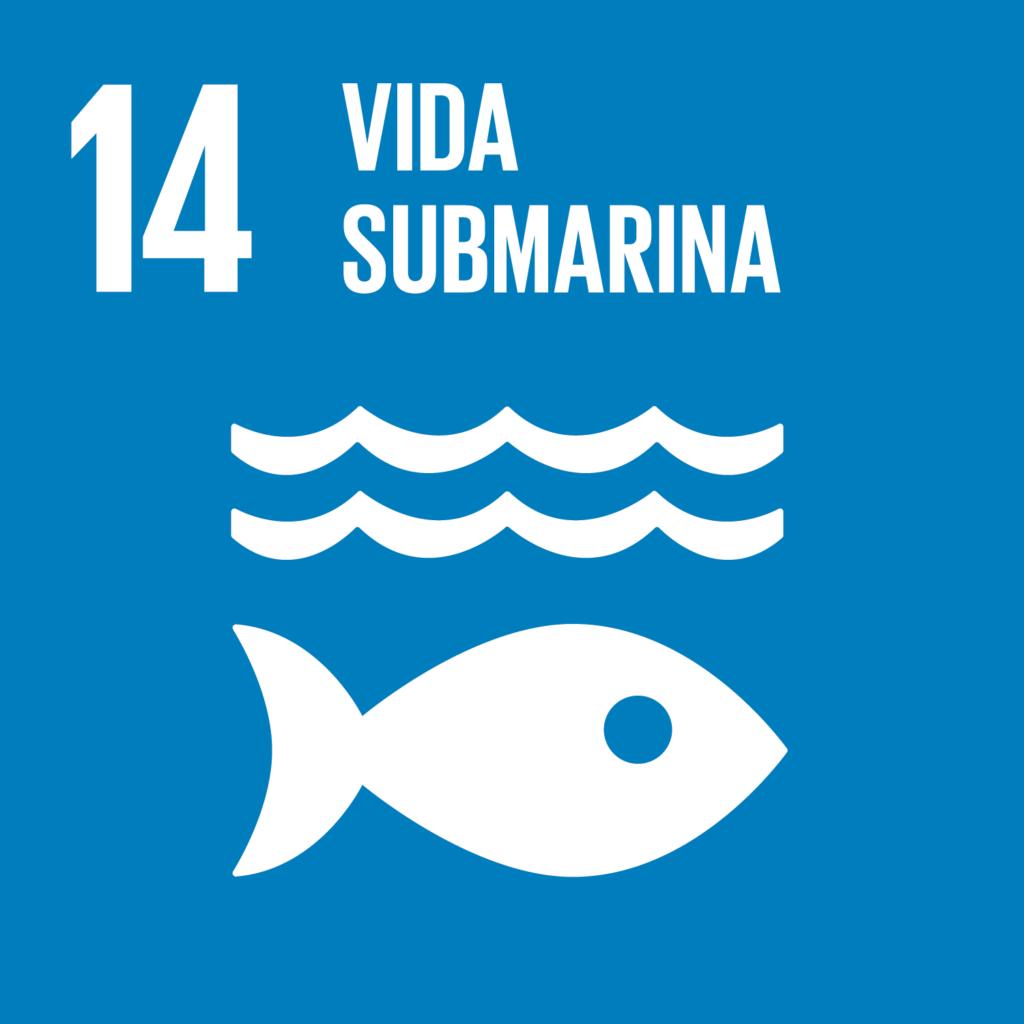 Objetivo 14: Vida submarina